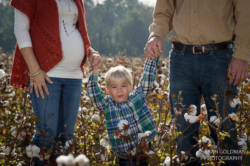 family-photos-in-cotton-field (28).jpg