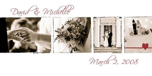 David and Michelle BOOK