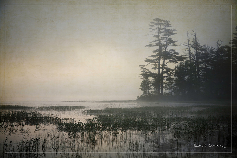 Foggy dawn, Damariscotta Lake, Maine