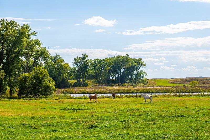 Horn Ranch-1246.jpg