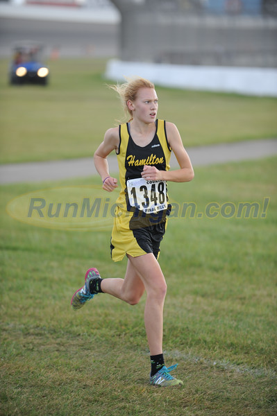 Finish Gallery 3 - D2 Girls 2015 MHSAA LP XC