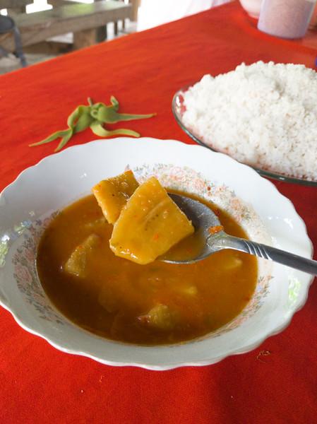 root soup in bowl-5.jpg