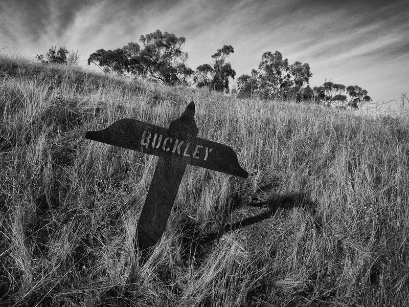 Buckley  Marker found in the Coyote Hills.