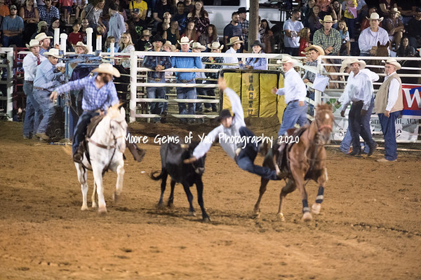 2019 Pro Rodeo Willis Farm- Saturday night