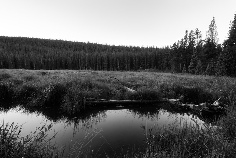 20160910_KW_LN_CottonWood_Beaver_Ponds.jpg