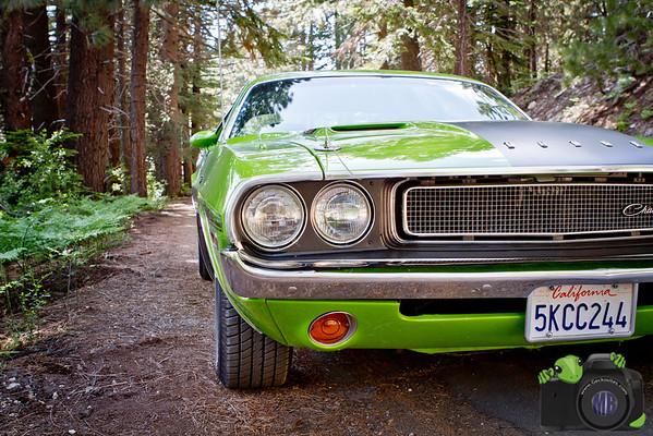Green Hardtop