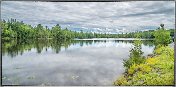 Cousin's Hike at Morris Island Conservation Area