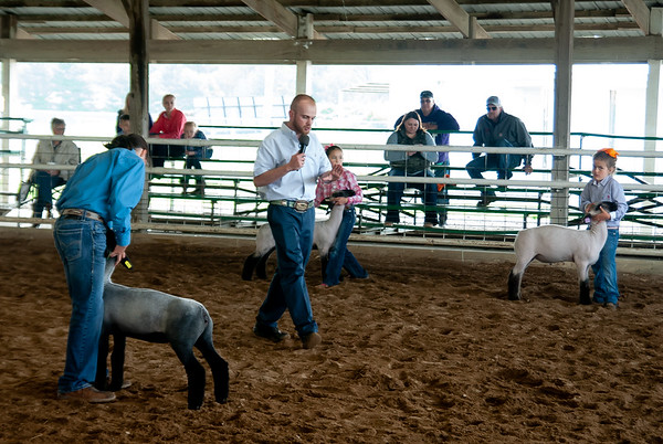 2019 Gary Fuller Memorial Sheep Show