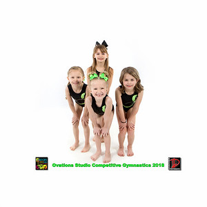 Cheer and Gymnastics Groups 2018