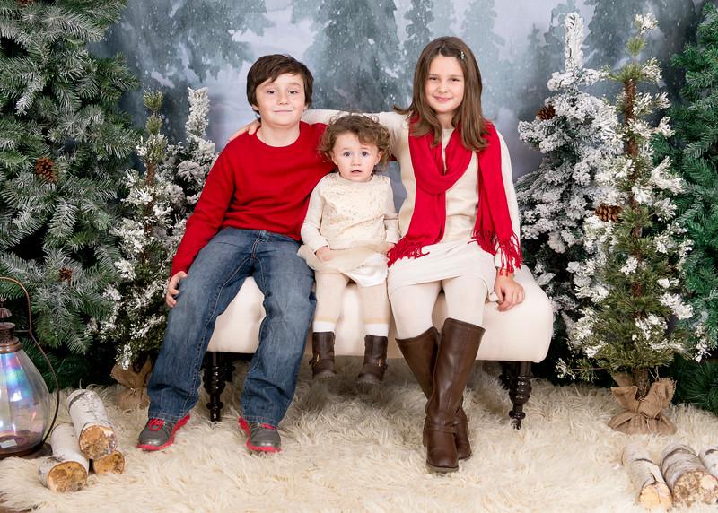 Kenney-HolidayMini2015-030.jpg