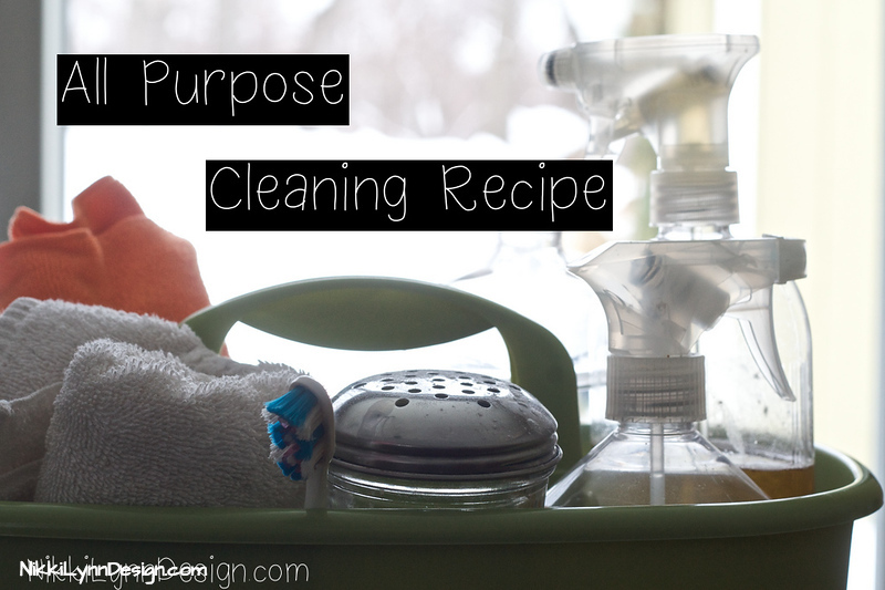 All Purpose Cleaner Recipe I NikkiLynnDesign