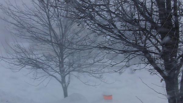 2010 - 02 - Second Big Snow