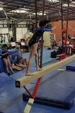 Falcon Gymnastics : Session 5 : Level 7 / 8 / APO