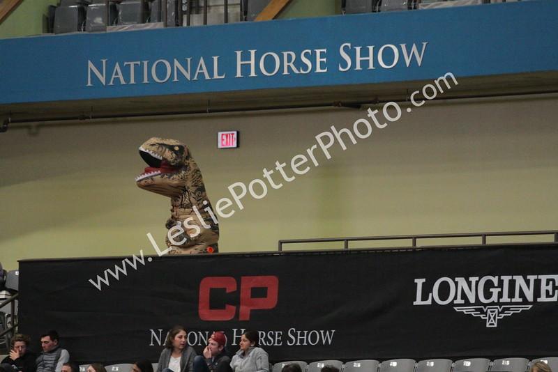 Barn Night at the CP National Horse Show, Lexington, Kentucky, Nov. 4, 2016