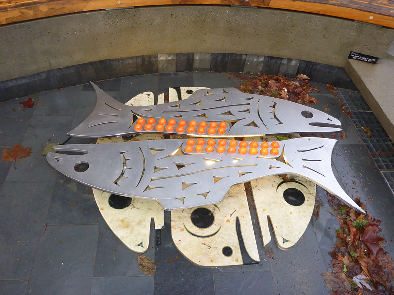 Cool salmon scutlpture / pool / fountain outside the UBC Museum of Anthropology.