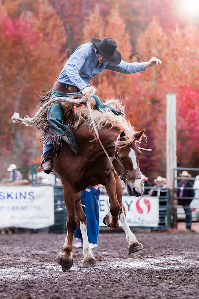 Bronc Riding Smithers 2016