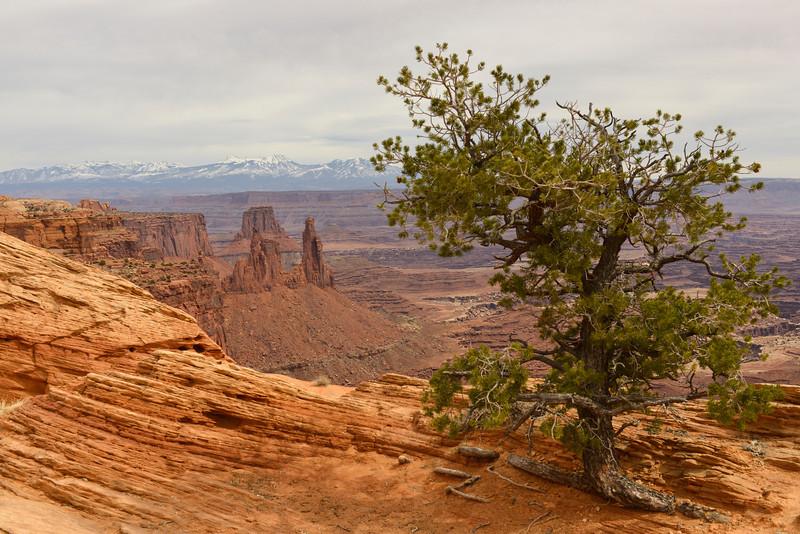 Canyonlands National Park.  Near Mesa Arch
