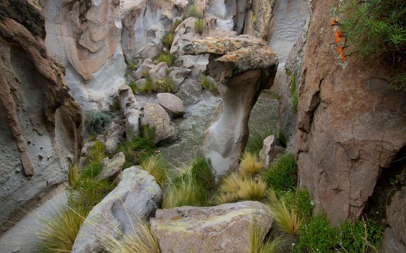 Bolivia-Peru0067.jpg