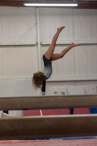 Brianna Gymnastics-0254.jpg