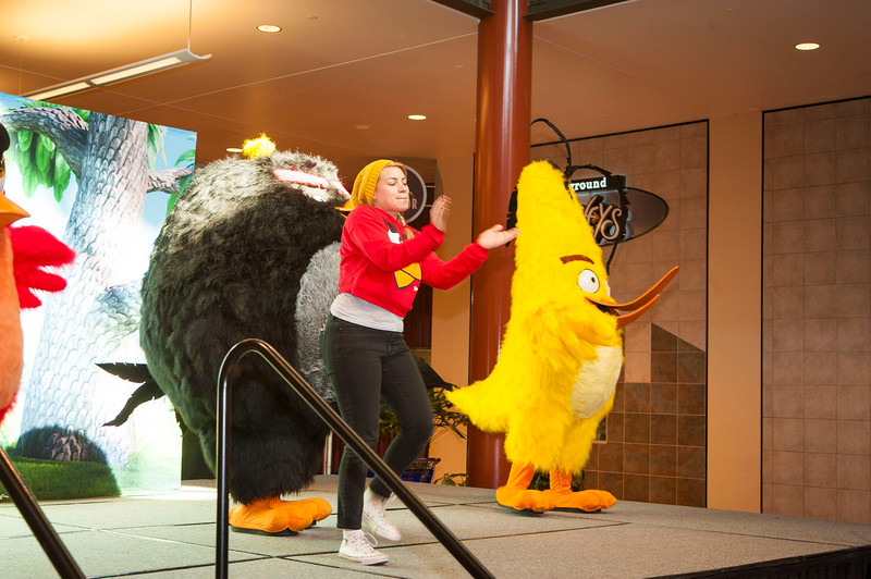 Angry Birds StoneCrest Mall 54.jpg