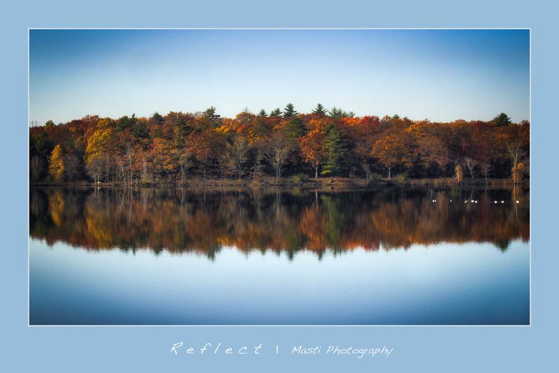 Reflect-Blue.jpg