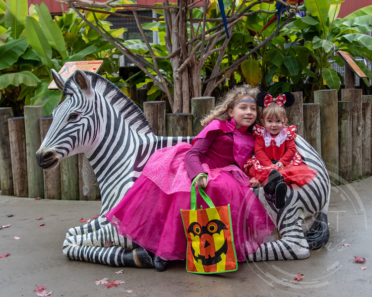 2018 Boo at the Zoo_25.jpg