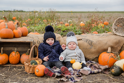 Albie & Theo - Pumpkin Mini 2019