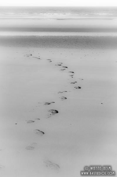 Omaha Beach 16   Black and White Photography by Wayne Heim