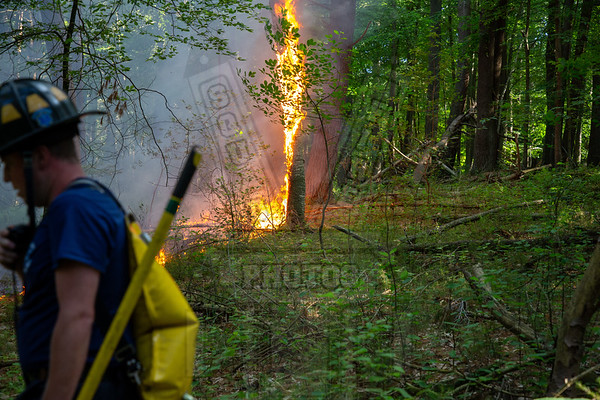 Manchester, Ct woods fire 6/17/20