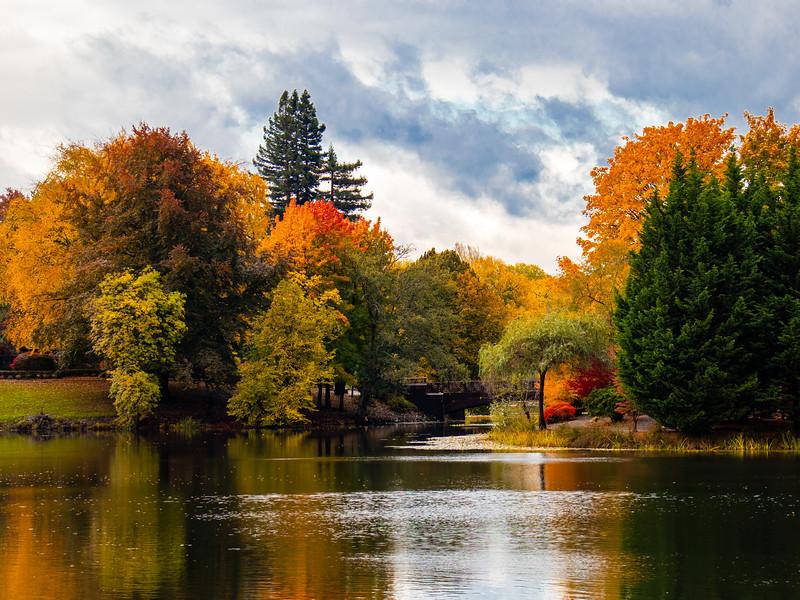 Lake Sacajawea, Longview, WA IMG_0519.jpg