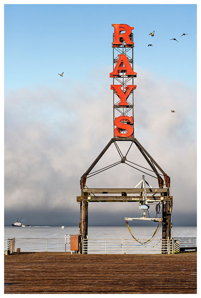 rays-AF2A4428.jpg