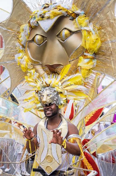 Leeds WI Carnival_008.jpg
