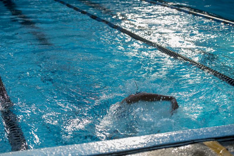 lcs_swimming_kevkramerphoto-102.jpg