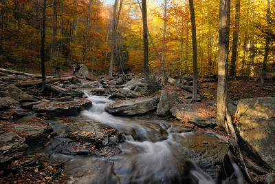 Ricketts Glen 2010 Autumn