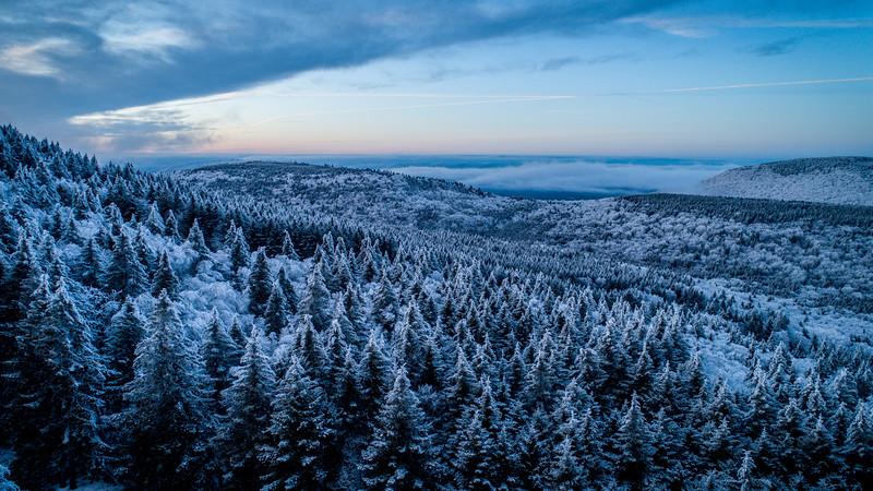 2020-02-01_SN_KS_Frosty Trees Aerial-0059.jpg