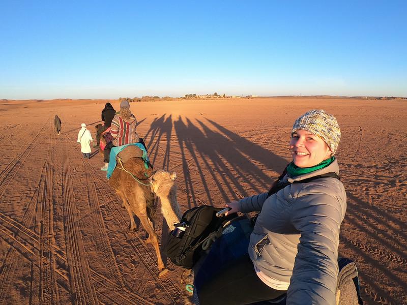 Sunrise camel ride in Morocco