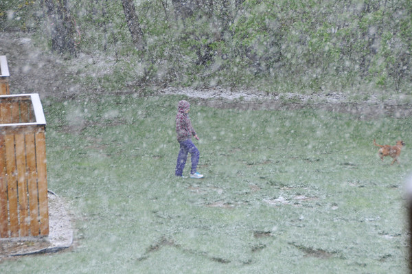 Snow on May 2, 2013