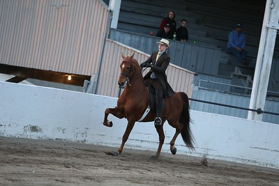 59. Juvenile 3 Gaited Country Pleasure Championship