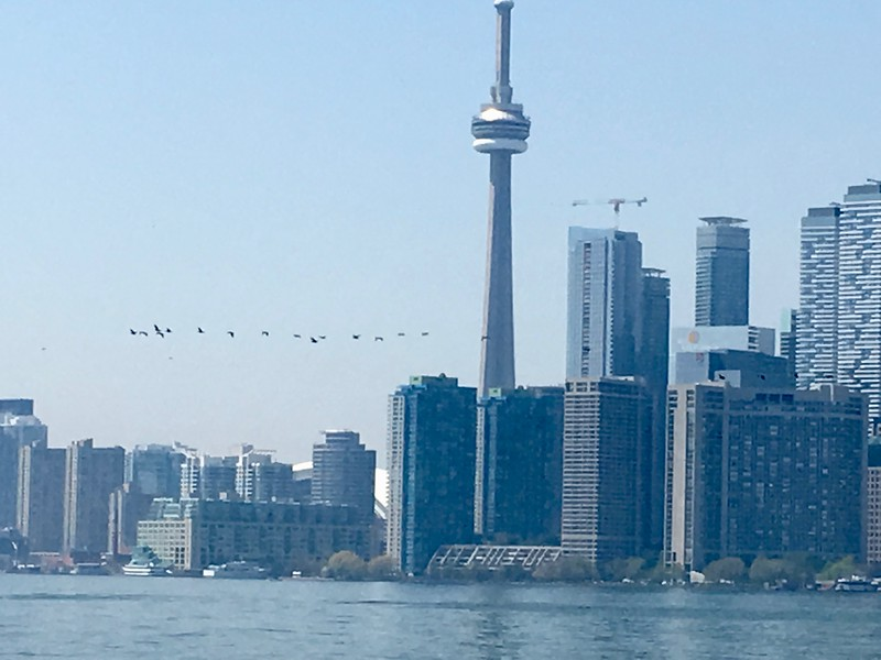 Toronto Is Park 6.jpg