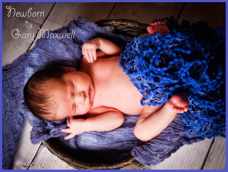 Newborn Babies 001.jpg