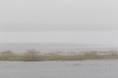 Rain 2017 May 29th.