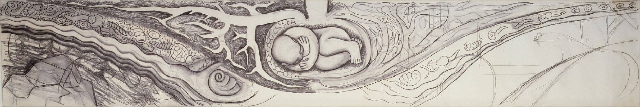 . Preparatory Drawing for Infant in the Bulb of a Plant (Detroit Industry east wall), Diego Rivera, 1932, charcoal with brown pigment over light charcoal. Detroit Institute of Arts