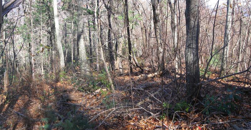 Little Table Rock Trail -- 3,300'