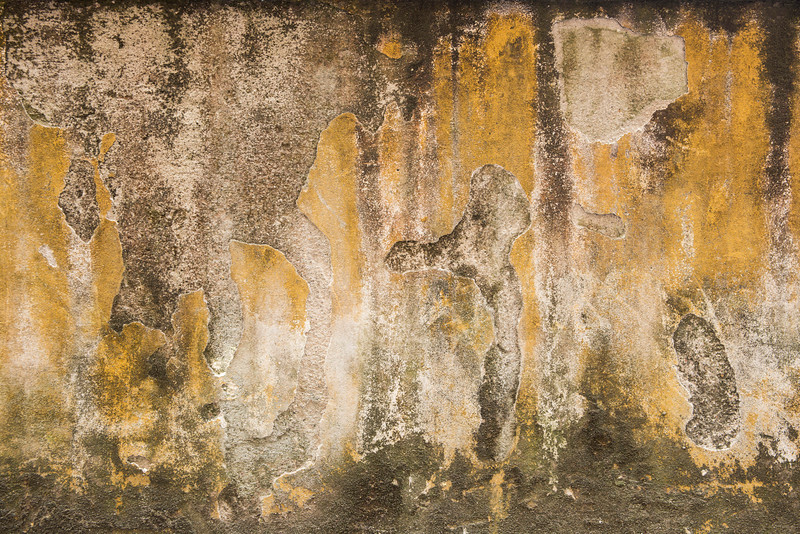 13-Lindsay-Adler-Photography-Firenze-Textures-COLOR.jpg