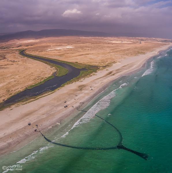 Sardine Season (33)- Dhofar.jpg