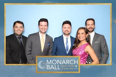 DVIS Monarch Ball 2020