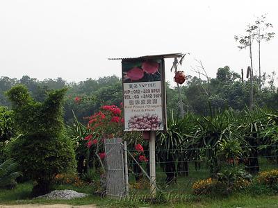 Bagan Lalang II & Tanjung Sepat 2006