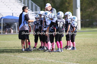 Mighty Mites v South Central 2017