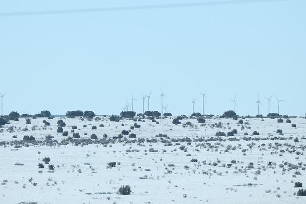 11/13/18  Las Vegas Wildlife Refuge