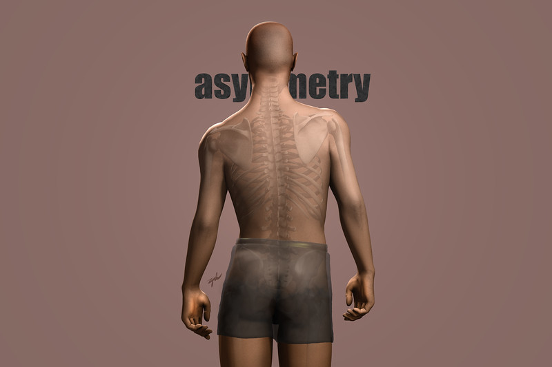 Asymmetry, Back (Posterior View), partially showing skeleton, with text